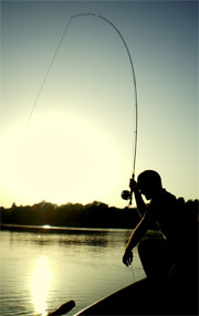 Sport fishing is of great recreational value