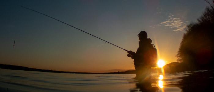 Lystfiskeri er også blå bioøkonomi