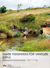Download rapporten Dansk Fiskeindeks For Vandløb (DFFV)